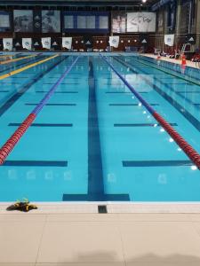 Publieksonderzoek Zwem22